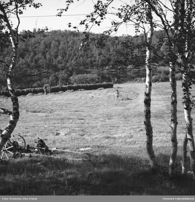 Naturbilde fra Neiden. To personer ses ute på jordet.