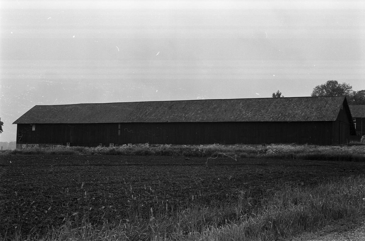 Ladugård, Häcklinge 1:3, Tuna socken, Uppland 1987