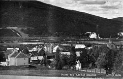 Alvdal stasjon