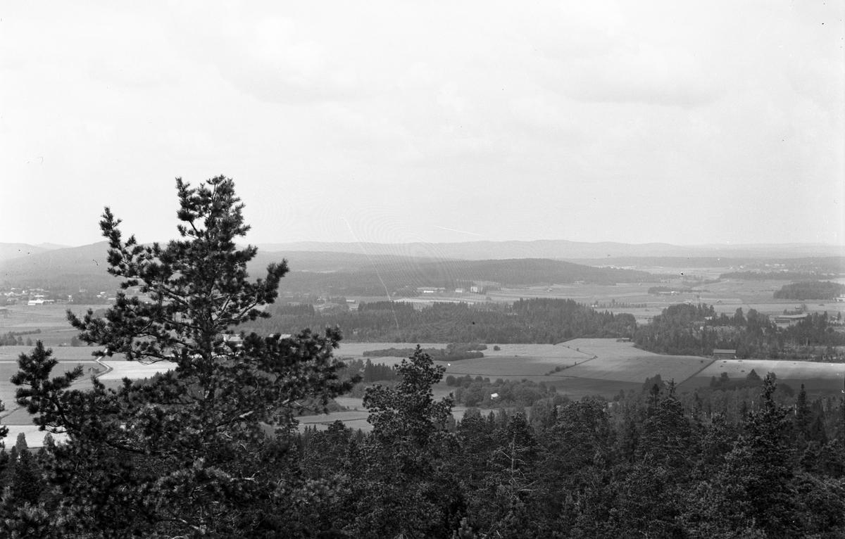Utsikt från Klocksberg. Till vänster Sävsta by, mitt i bilden Torsåkers Ålderdomshem (Fattigvården).