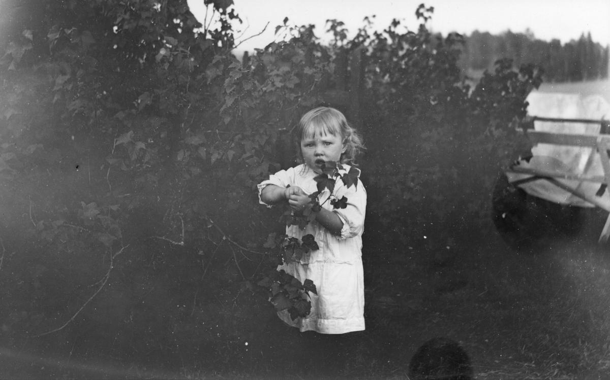 Okänt barn i Lenninge på 1910-talet.
