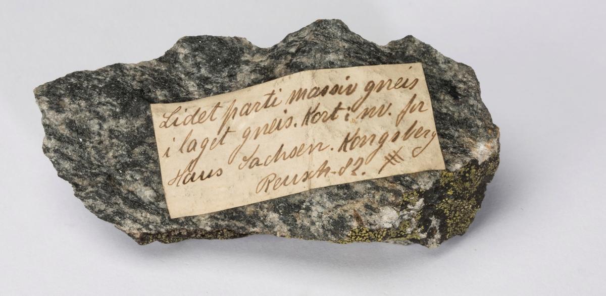 Etikett på prøve: Lidet parti massiv gneis i laget gneis. Kort i nv. for Haus Sachsen. Kongsberg Reusch.82