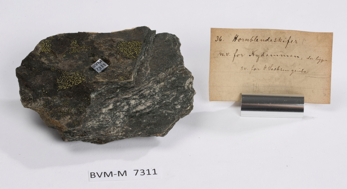 Etikett i eske: 36. Hornblendeskifer n.v. for Nydammen, der ligger s.v. for H. Sachsen grube.