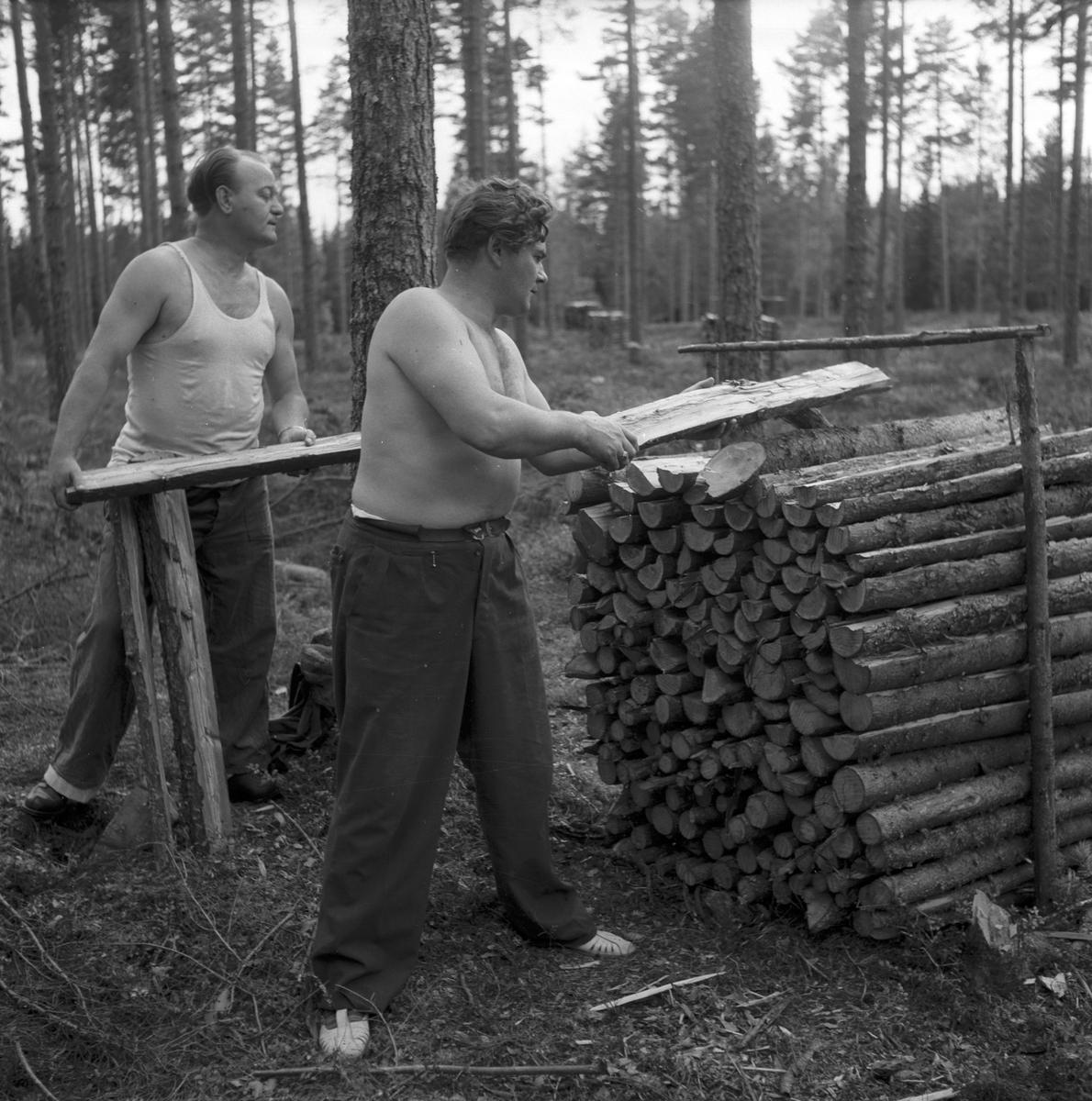 Opersångare Conny Söderström på skogshuggning med Egon Madsen. 8 augusti 1947.