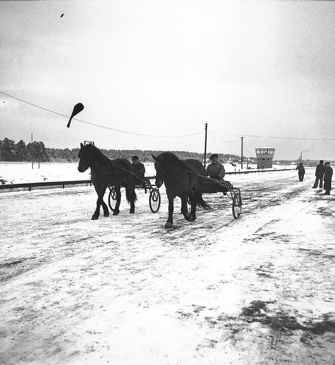 År 1937. Gefle-Dala Travbana. Häst. Reportage för Gefle Dagblad