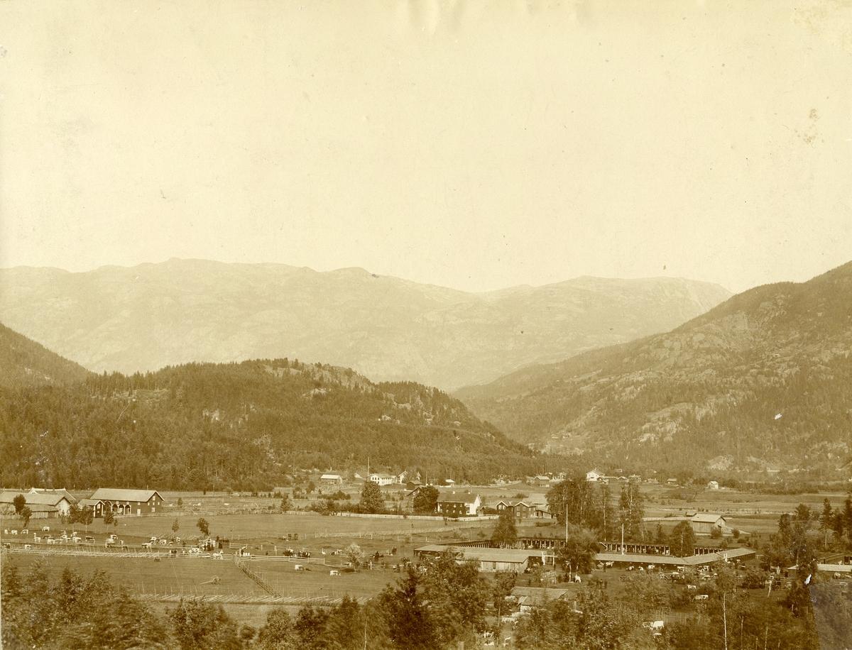 Dyrskuplassen i 1890-åra.