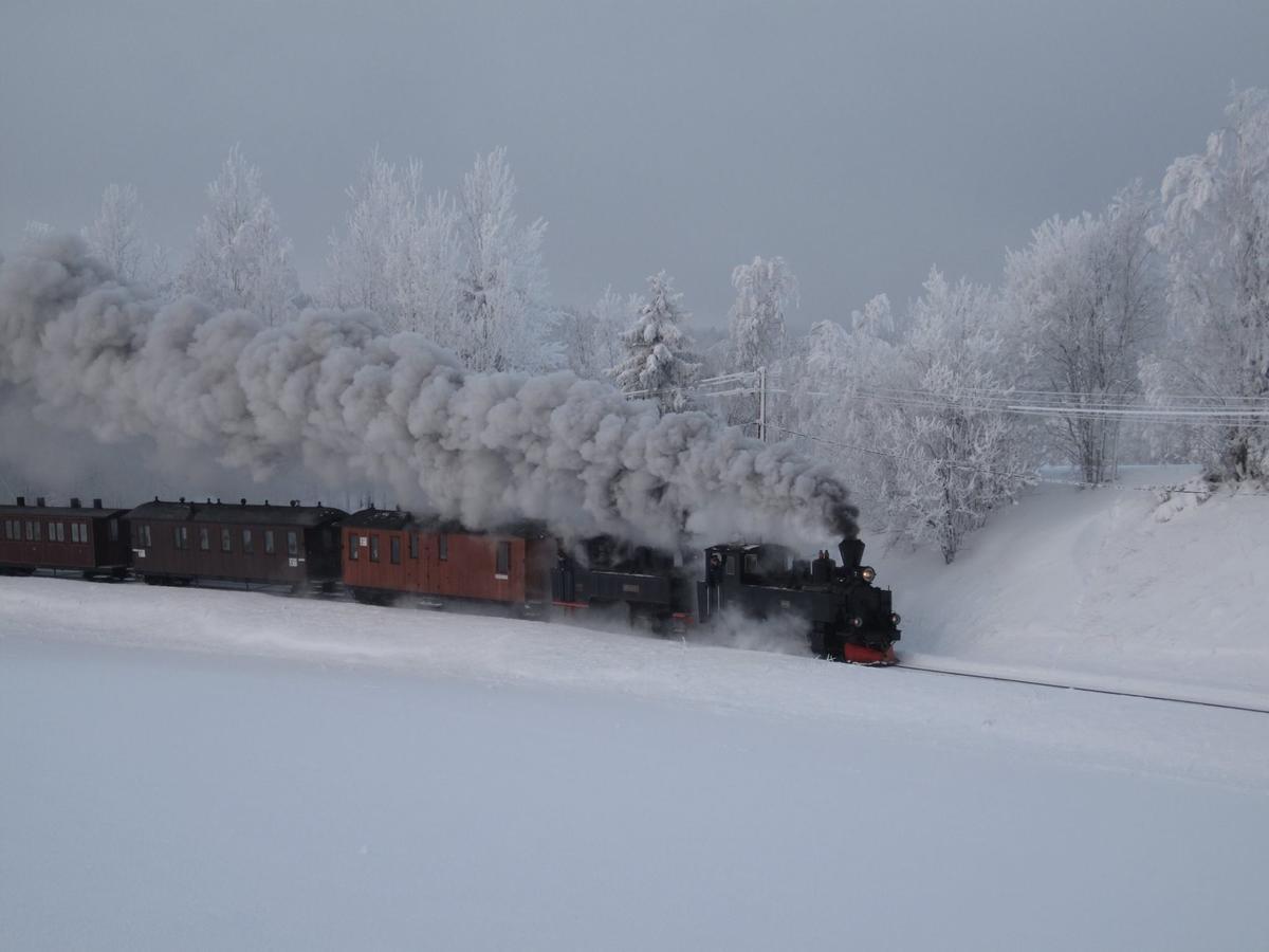 To_lok_med_vogner_skikkelig_vinter.jpg