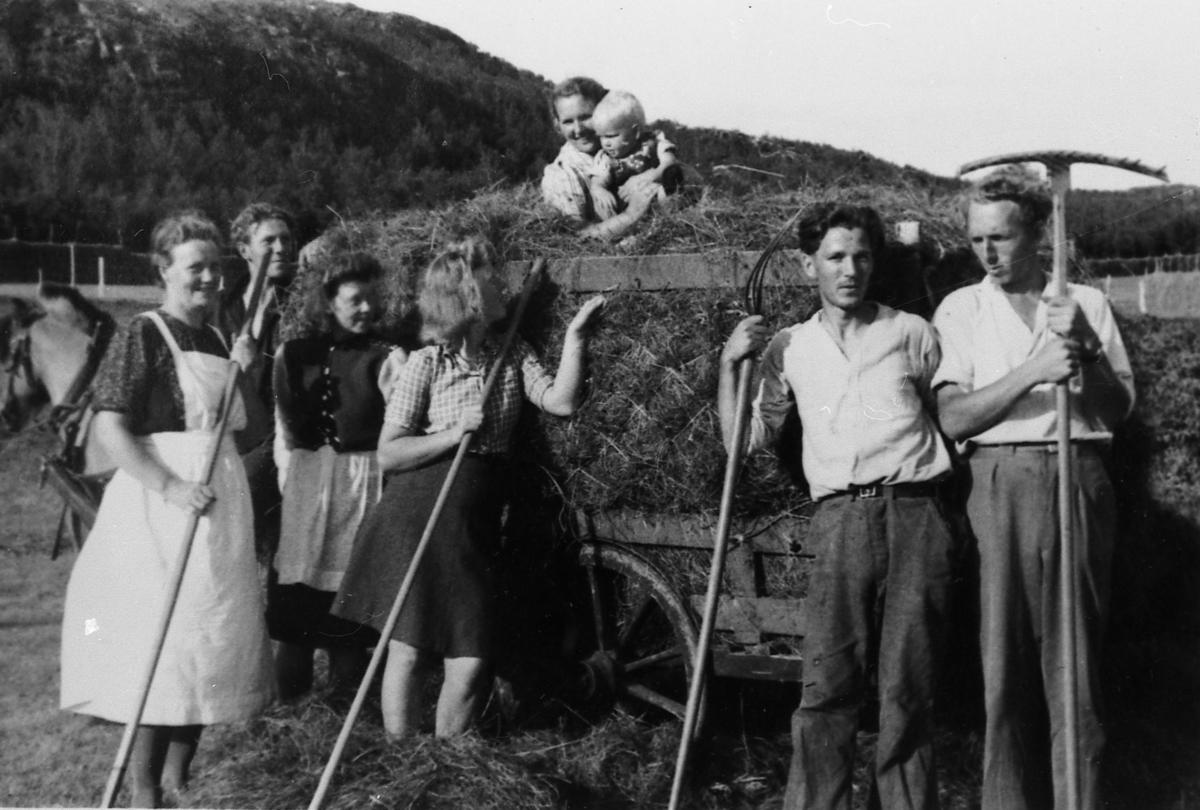 Tørrhøykjøring i Grønvika, Å i Senja 1944