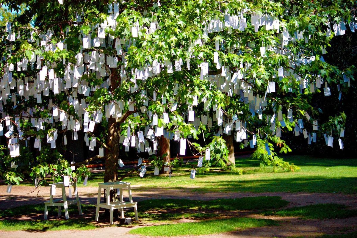 Louisiana_Wishing_Tree.jpg
