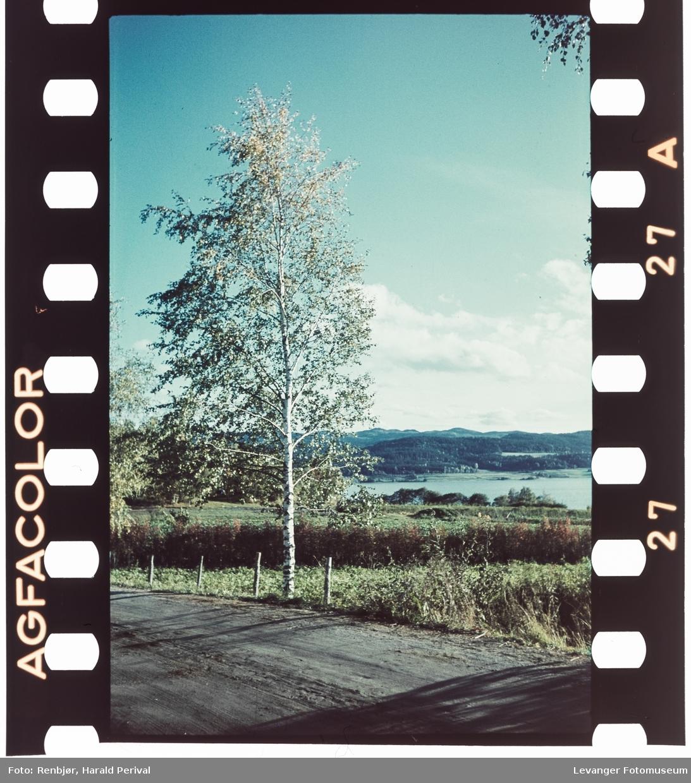 Landskap i Levanger.