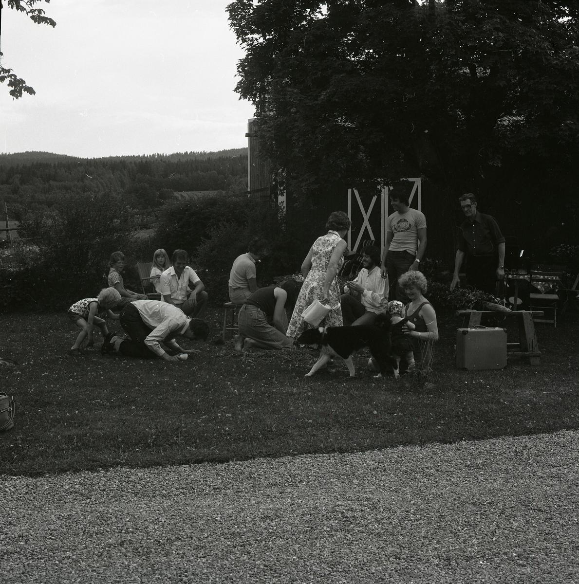 Ett midsommarfirande på gården Sunnanåker 1979 tar plats på gräsmattan intill logen. Några barn leker med både vuxna och varandra medan en hund nyfiket traskar förbi. På tomten står träd och buskar med granna lövverk vilket reflekteras i horisonten där skogen står i sommarklädnad.