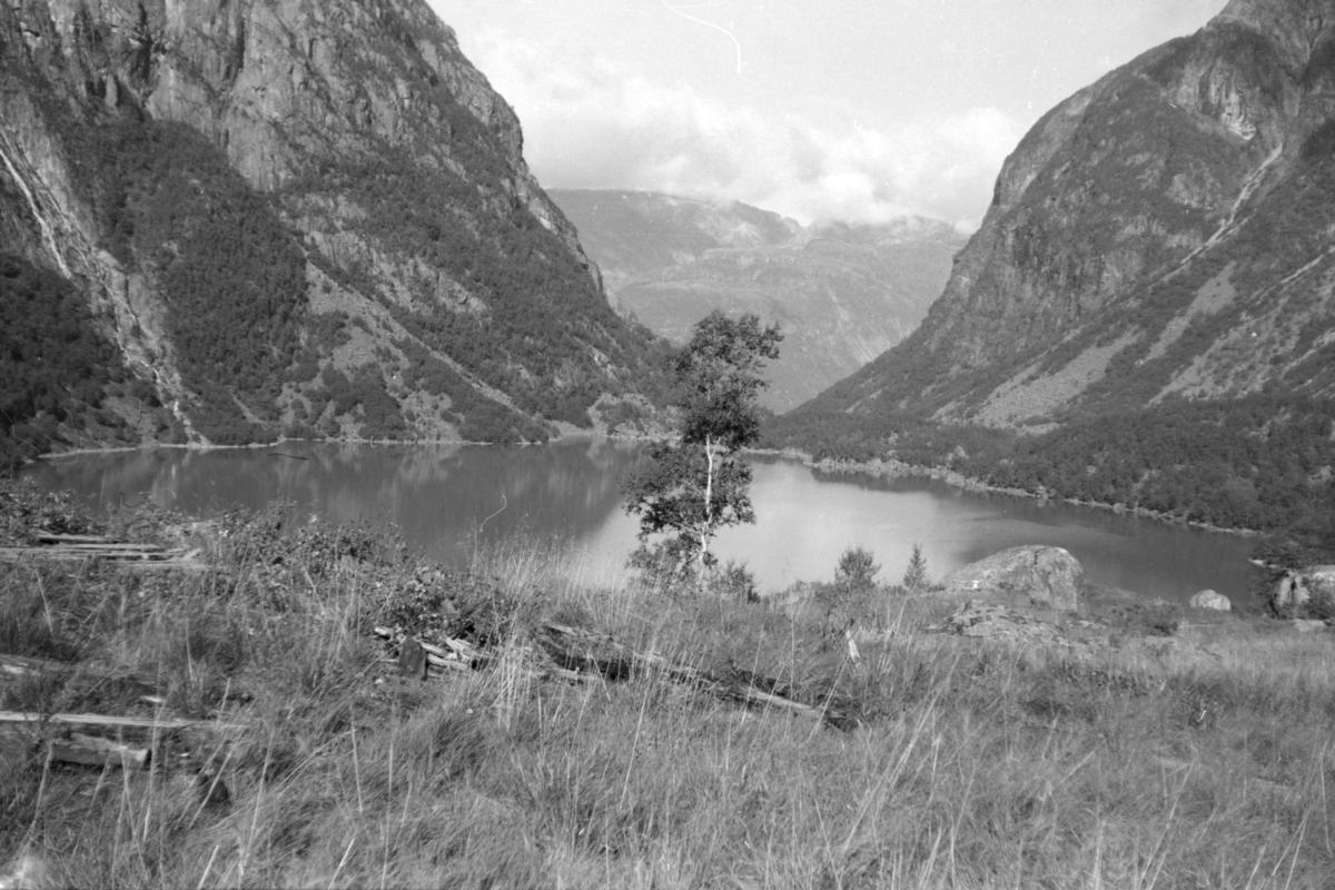 Retning nord fra breen. September 1973