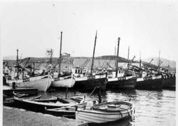 Fiskebåter, bygninger, sjø, landskap.