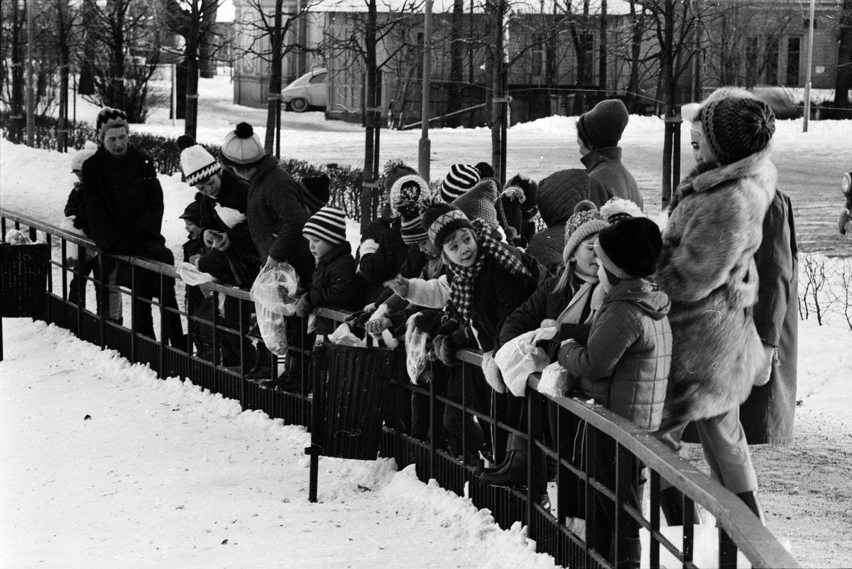 """Livligt i Svandammen"", Uppsala 1965"