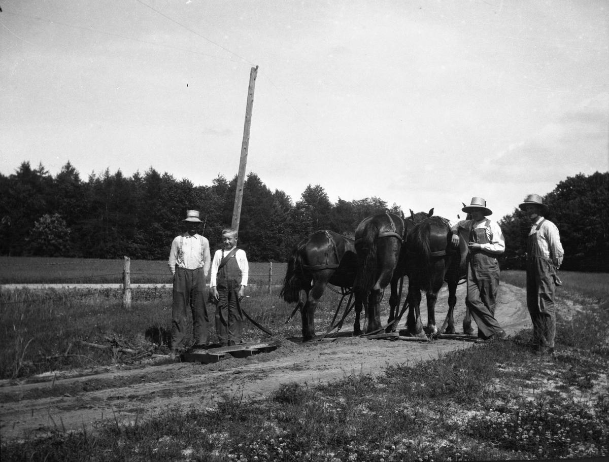 Veihøvling.Menn og hester