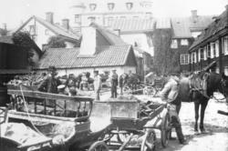 Hästar, oxar, vagnar och människor på Westmanska gården.