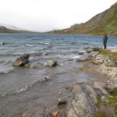 Arkeolog Elling Utvik Wammer fra Norsk Maritimt Museum på befaring ved Bygdin i oktober 2012. (Foto/Photo)
