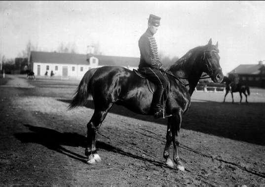 1. Årselever vid Strömsholmskursen, dressyr på Stallplan. Strömsholm 1910-11.