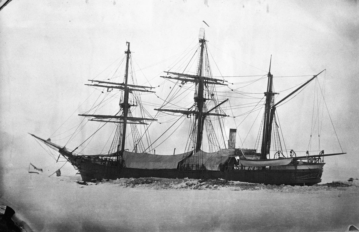 """Fartyget Vega """"Ett noggrant fotografi av Vega, en bild av tekniskt hög kvalitet, som Palander tagit på isen i Pitlekai. Bilden är den enda tagen av fartyget under övervintringen."""" Från Vegaexpeditionen 1878-1880."""