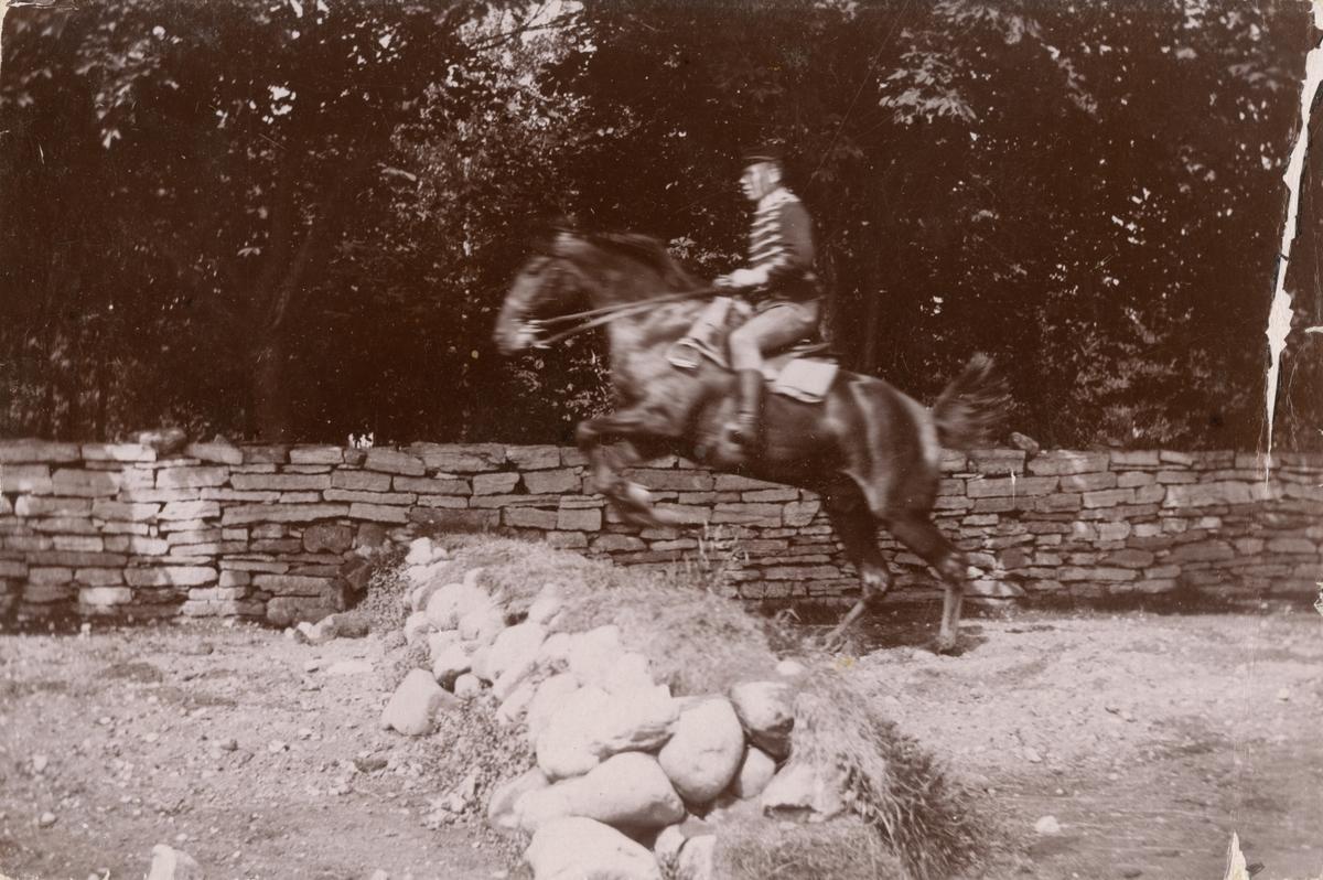 Soldat från Livregementets husarer K 3 till häst.