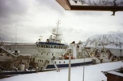 Loddesesong i Honningsvåg. Bilde tatt fra Nordkappmuseet. Ma