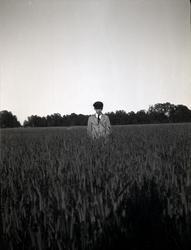 En pojke i ett sädesfält i närheten av Tuna gård.
