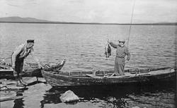 """Menn med flott fiskefangst. fv. Ole Nordseth """"Nygarsen"""" og u"""