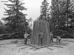 Reising av kolmile/kullmile/kølmile på Norsk Skogbruksmuseum