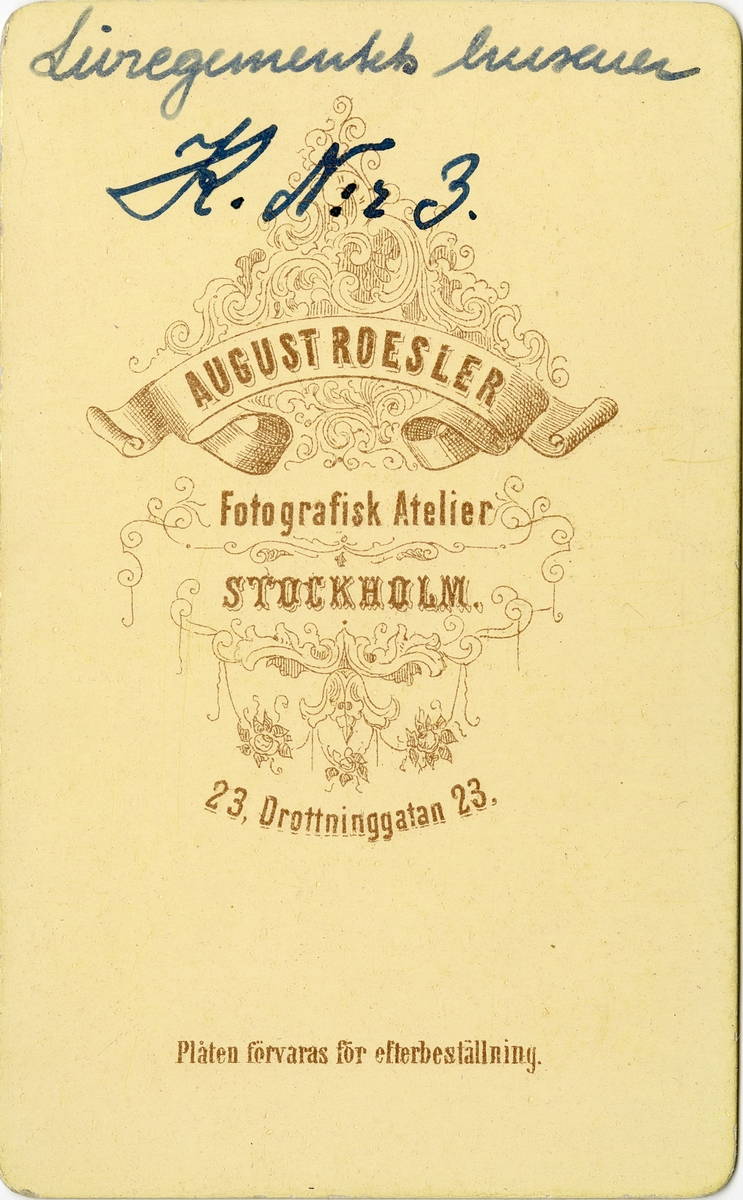 Porträtt av friherre Fritz Henrik von Essen, officer vid Livregementets husarer K 3.