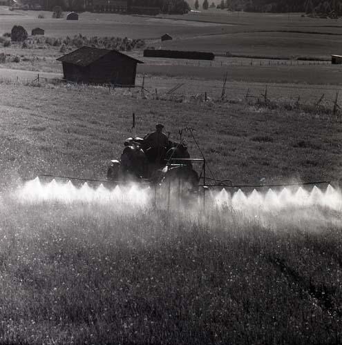 Ogräsbesprutning av havreåker. Notera den stora vätskemängden! Johan Jonsson färdas fram över odlingsmarken i en traktor. Solen skiner och det är en fin dag 1963 i Glössbo, Rengsjö. Bortom traktorn syns flertalet förteelser som hör jordbrukslandskapet till; lador, hässjor och inhägnader. Mitt i denna idylliska landskapsbild är det enda som sticker ut besprutningsmaskinen som traktorn drar runt på åkern.