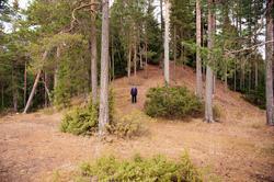Hovinsholmen, Helgøya, Hedmark. Her ser en tydelig dimensjon