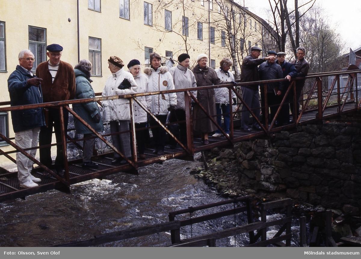 """En studiecirkel på vandring vid forsen i Mölndal, 18/4 1995. Kvinnor och män ståendes på en gångbro vid """"Strumpan"""". Kv 22:38."""