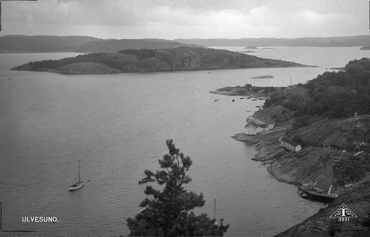 """Enligt Bengt Lundins noteringar: """"Ulvesund. Ulvön från bergen se 246. Vykort TF 3951 BL 1235c""""."""