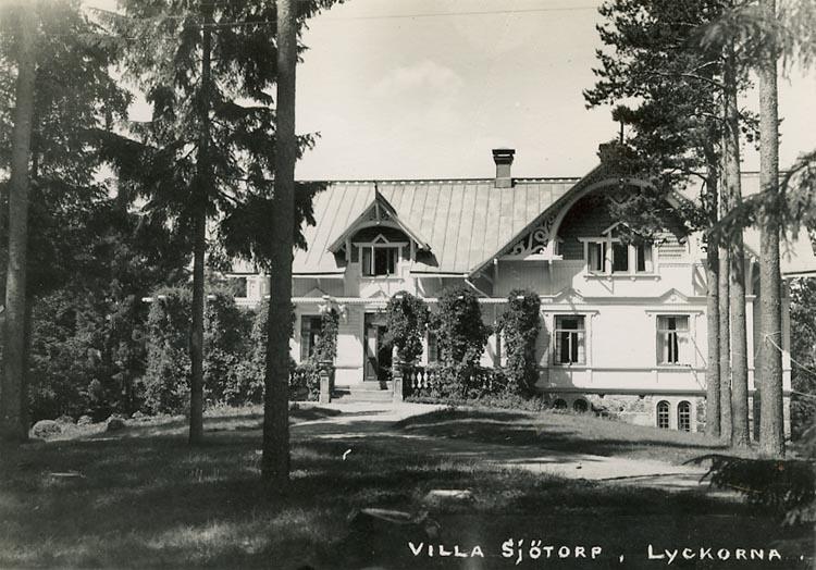 """Enligt Bengt Lundins noteringar: """"Villa Sjötorp. Lyckorna. Mellan furor""""."""