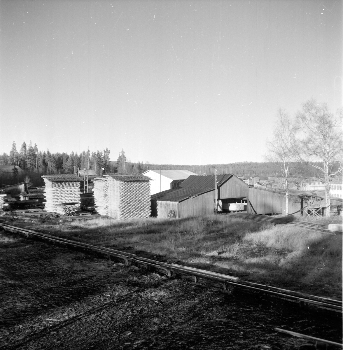 Lingbo, Skog, Finnés, November 1959