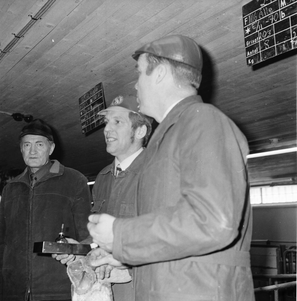 Nytorp, Svinhälsodag, April 1972