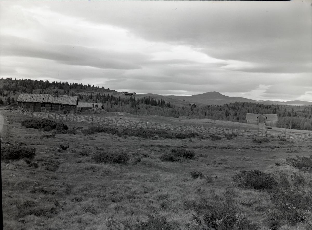 Stølsmotiv, Rust - Rotvollfjord, Etnedal.