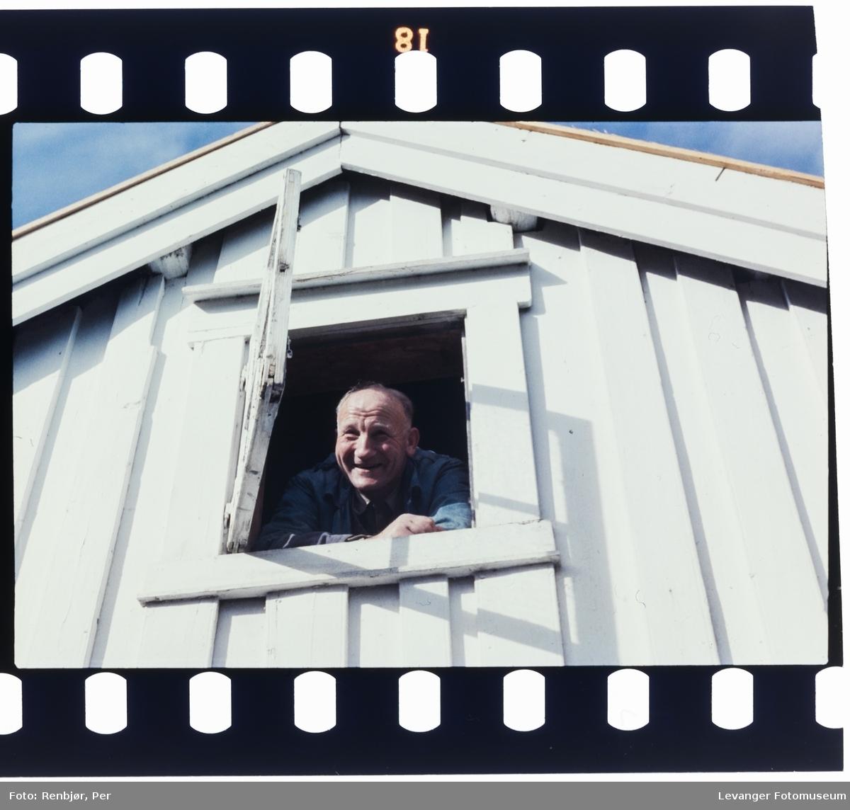 Wilhelm Skaufel kikker ut av vindu.