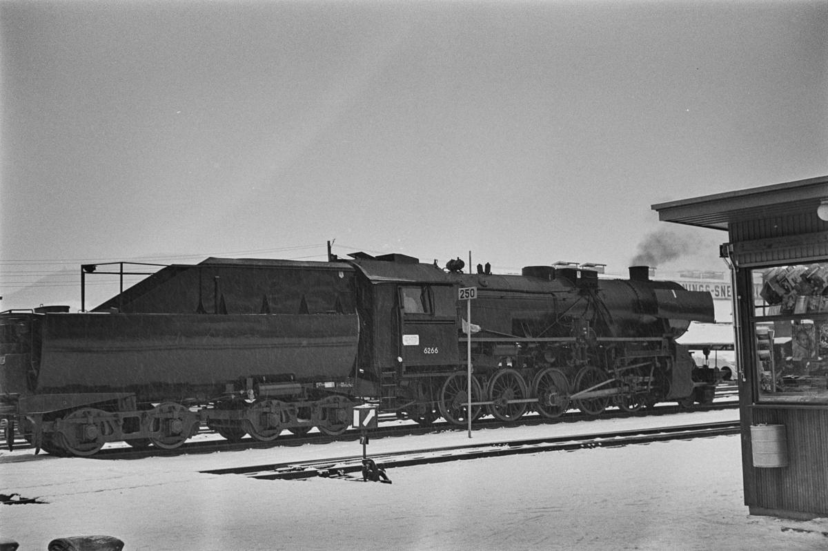 Damplokomotiv type 63a nr. 6266 på Melhus stasjon.