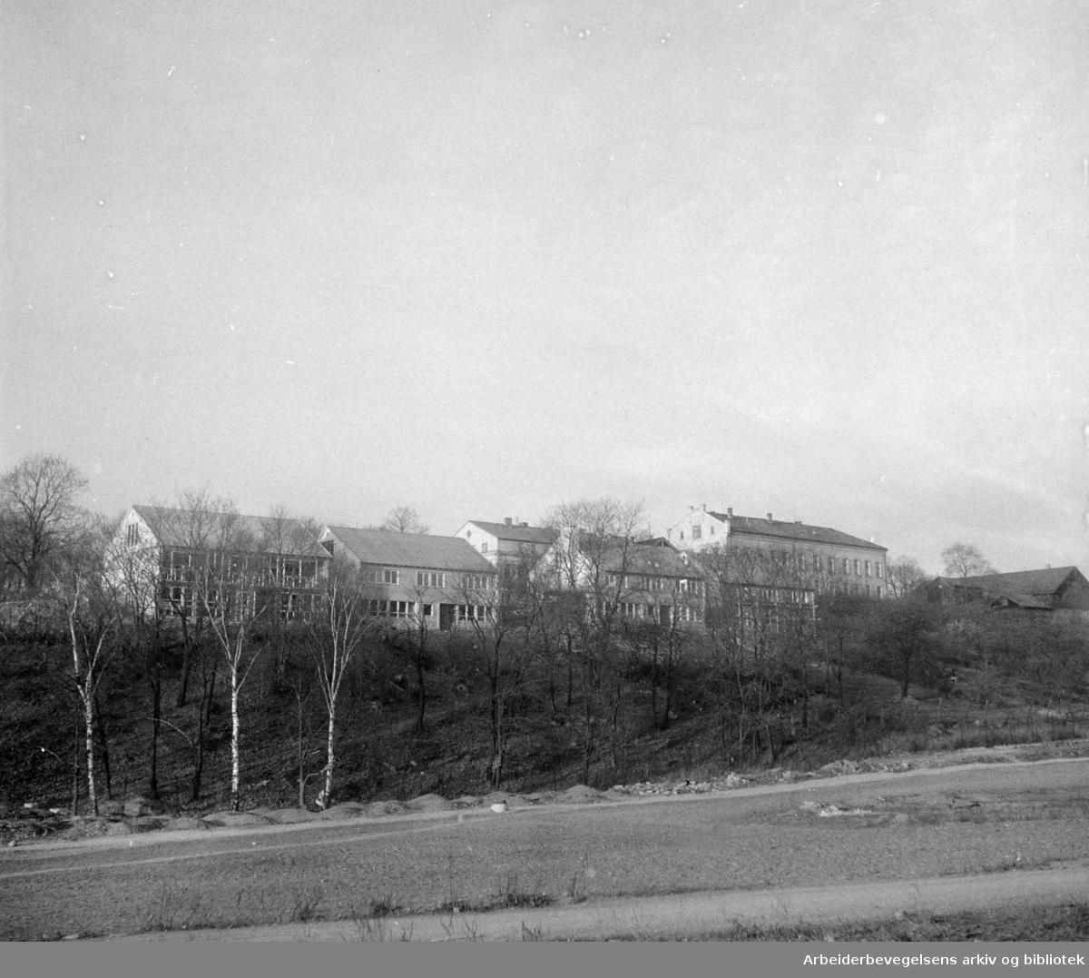 Torshov åndssvakeskole. Desember1955