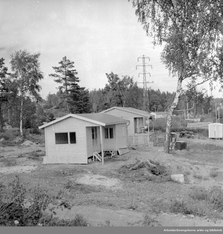 Solvang Hagekoloni. August 1957