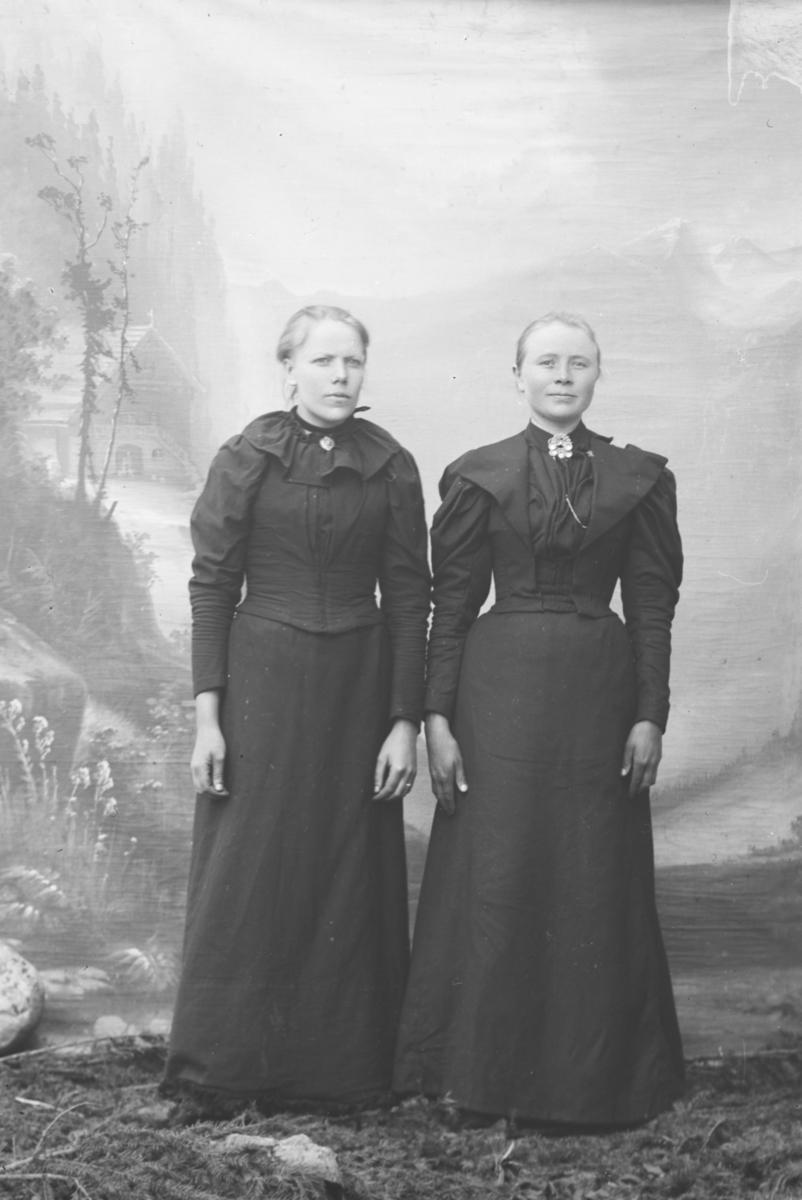 Portrett, 2 kvinner står ved siden av hverandre, helfgur. Til høyre  Margit O. Ødegaard