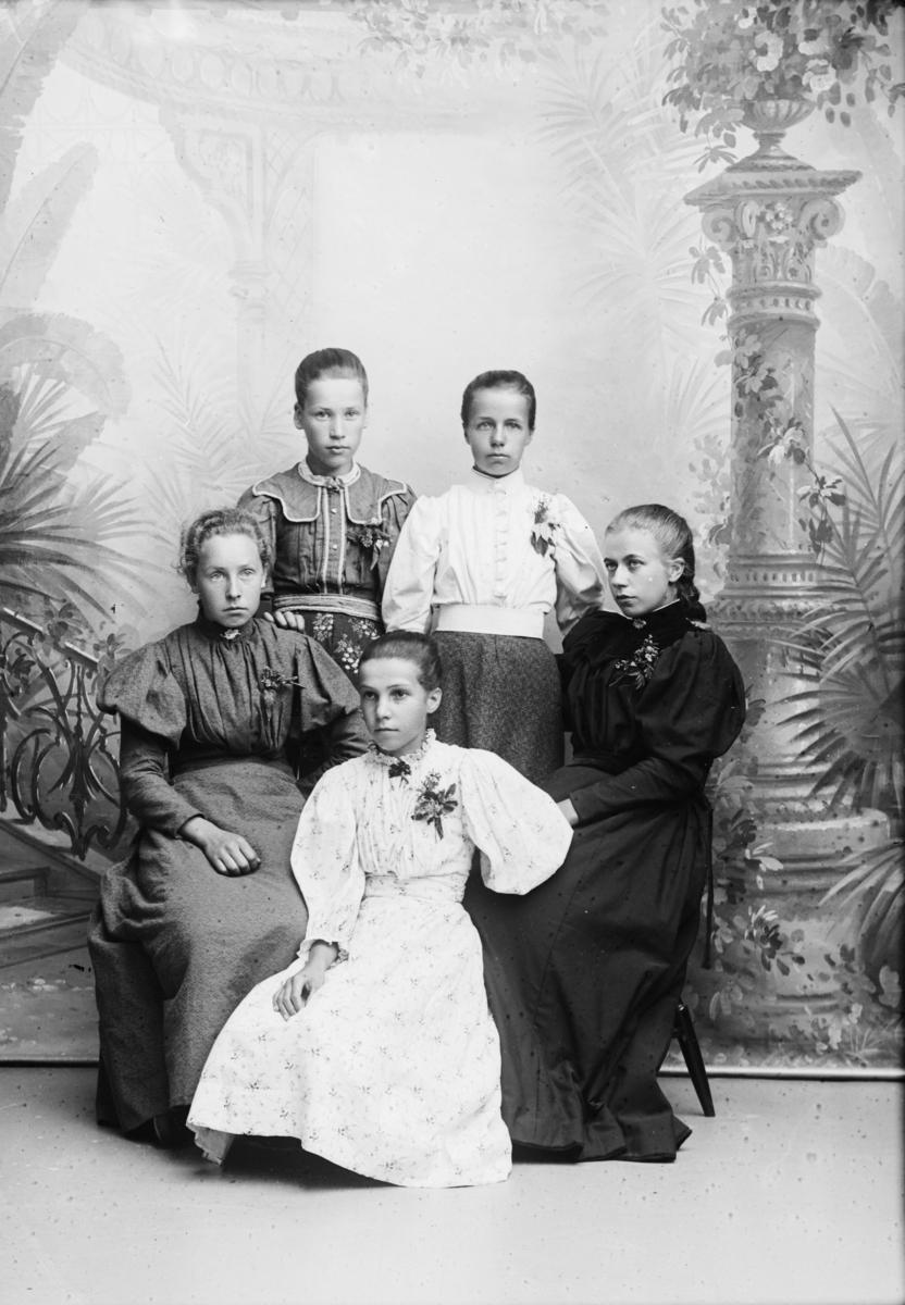 Gruppe. Fem unge kvinner beskrevet som Helga Jensens gruppe