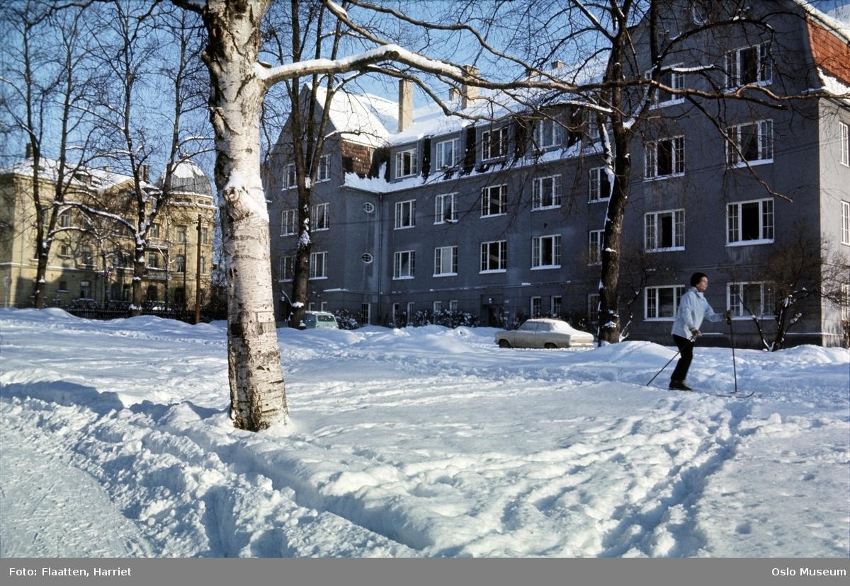 park, snø, kvinne, skiløper, gate, biler, bygårder