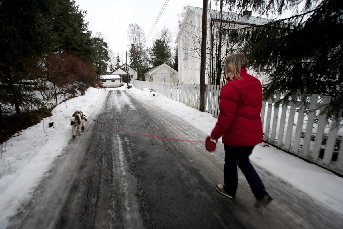 Hunden Balder på tur sammen med sin eier.