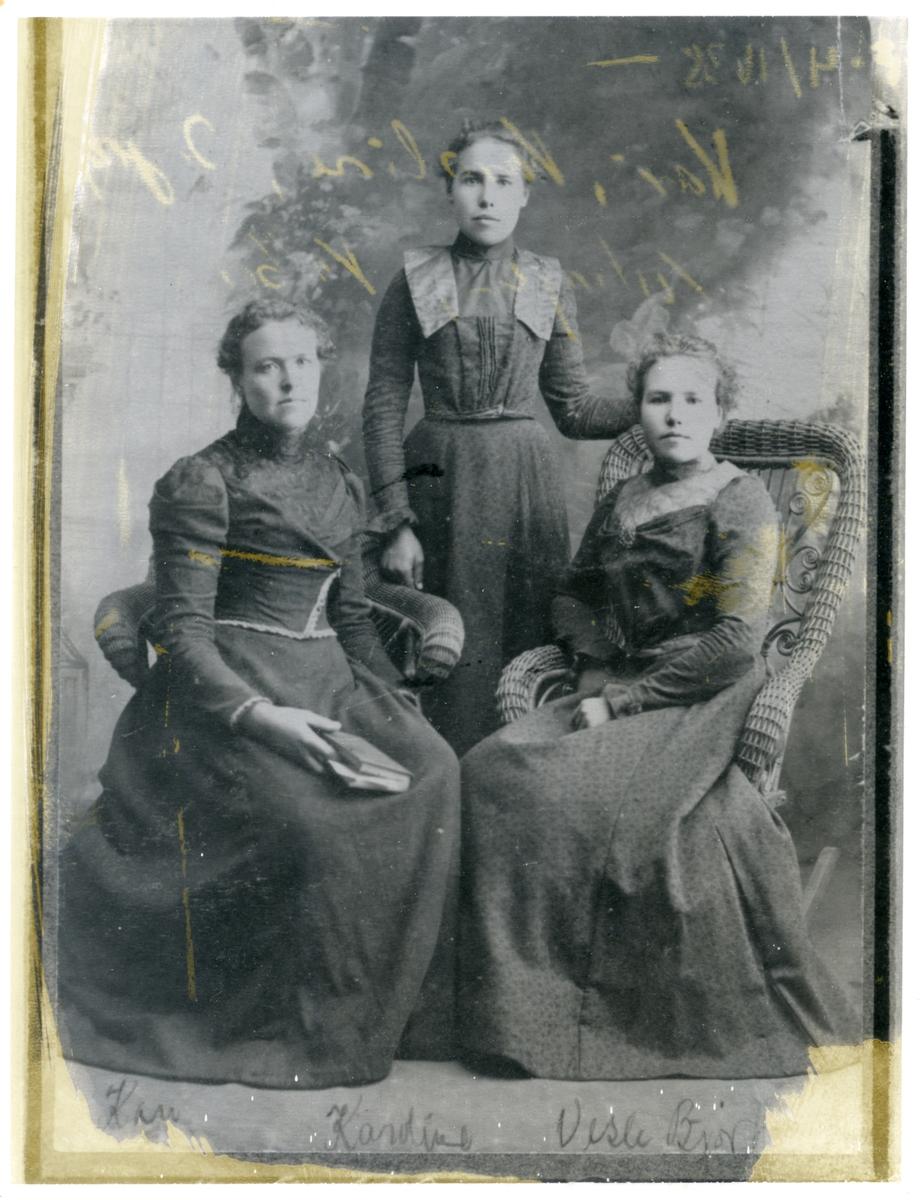 Portrett av tre kvinner. Dei er alle kledd i mørke kjoler. To av ei sit medan den tredje står bak. Kvinna til venstre har ei bok i fanget.