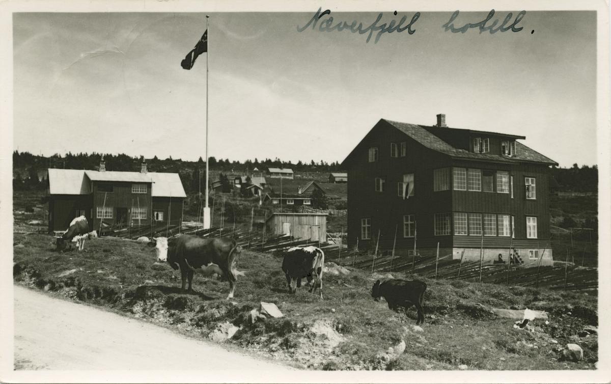 Postkort: Neverfjell hotell, Nordseter