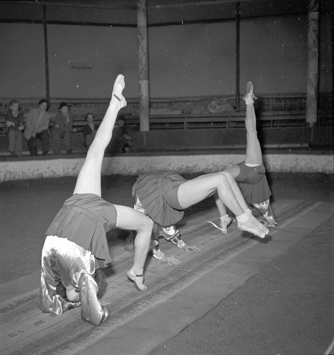 Furuviksparken invigdes pingstdagen 1936.  Cirkusbyggnaden Teater-Cirkus med cirka 600 platser, uppförd 1940.