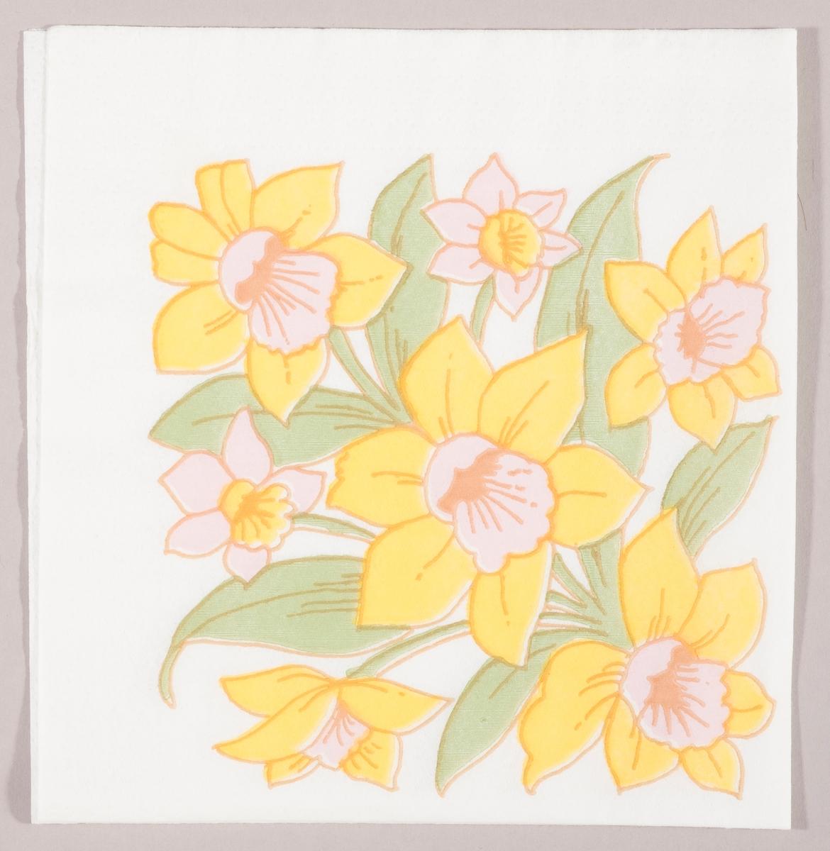 Påskeliljer og pinseliljer