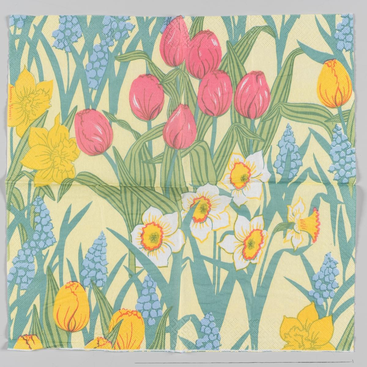 Pinseliljer, påskeliljer, perleblomster og røde og gule tulipaner,